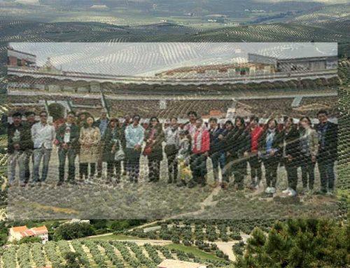 Empresarios y turistas chinos visitan Linares